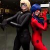 Cat Noir and Ladybug