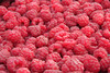 "Close-up of fresh, organically grown raspberries.  (To purchase prints or downloads, click on the ""Buy"" or shopping cart button above the image.)"