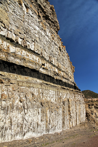 coal seams in a mining test cut