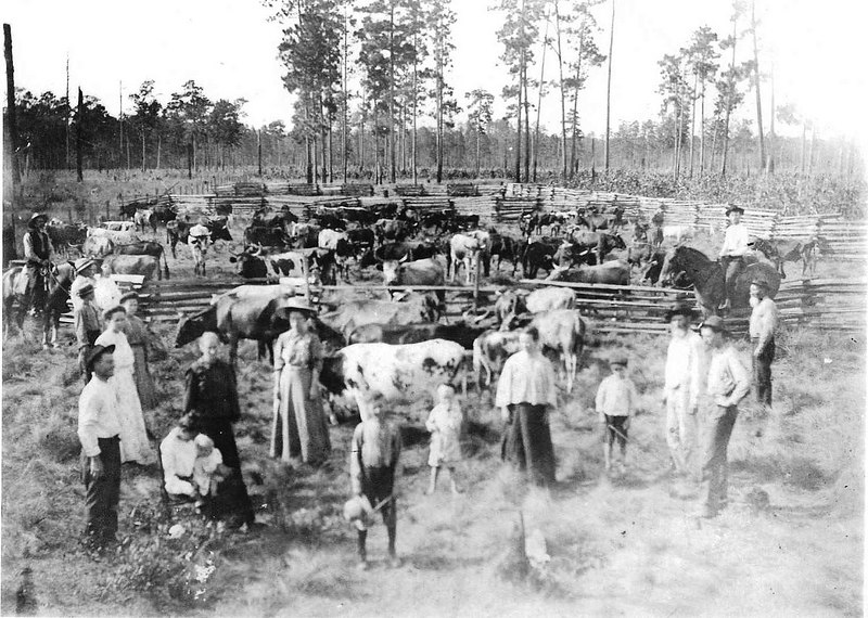 William Evant Clanton & and Effie Jane McNabb<br /> He is standing by her, she is sitting with the baby, Mamie Clanton Hewitt. Believed to be Effie Jane McNabb's family's farm.<br /> She was the daughter of Hamilton M. McNabb & Nancy (Tison) Tyson<br /> He was the son of George Washington Clanton & Ester Ann Margaret Connell (Information courtesy of Barbara Giddens)