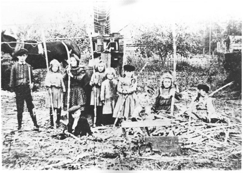 Cane grinding on the Leggett farm, Edson and Liles children