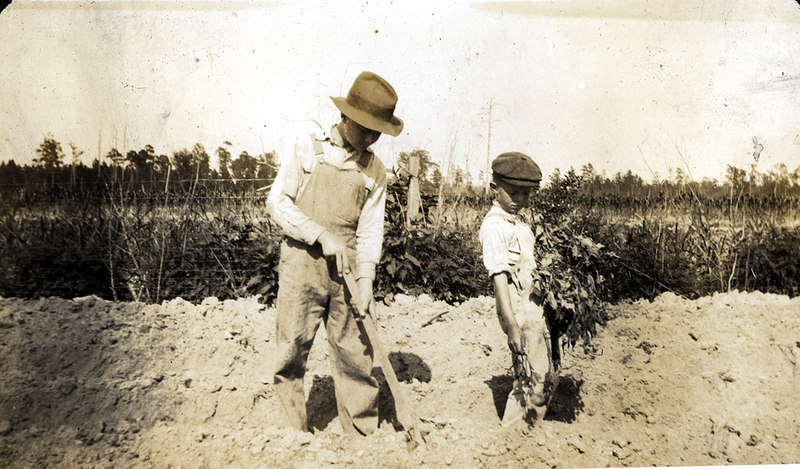 Planting starts on the John Paulk farm near Alapaha about 1920. This series of photographs documents the farming process in Berrien County about 1920