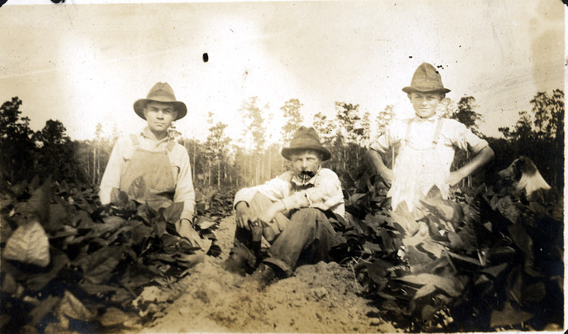 Taking a break from the chores on the John Paulk farm near Alapaha about 1920. This series of photographs documents the farming process in Berrien County about 1920