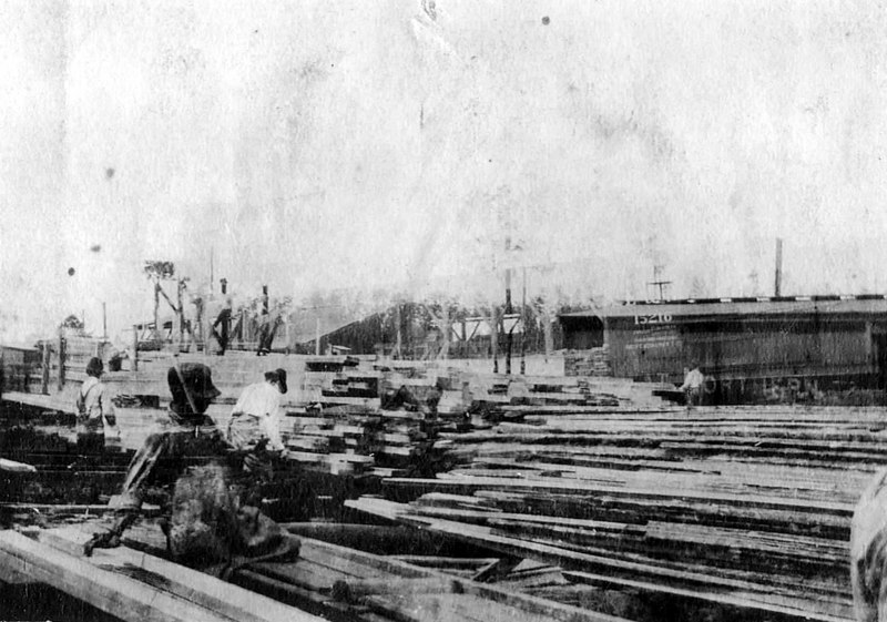 Berrien Lumber Company, also known as Ruby Sawmill. Workers are stacking cut lumber into piles.