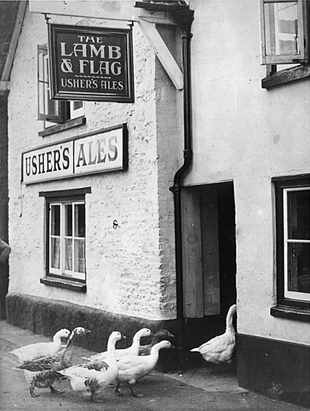 <center><font size=3><u> - Lamb and Flag - </u></font> (BS0350) </center>  Geese marching into Inn for a pint.