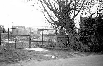 <font size=3><u> - Passey's Yard off Brook Street in final state of closure - </u></font> (BS0537)  The extensive Scrap and Knackers Yard bordering Brook Street was for long the only other village industry than farming.