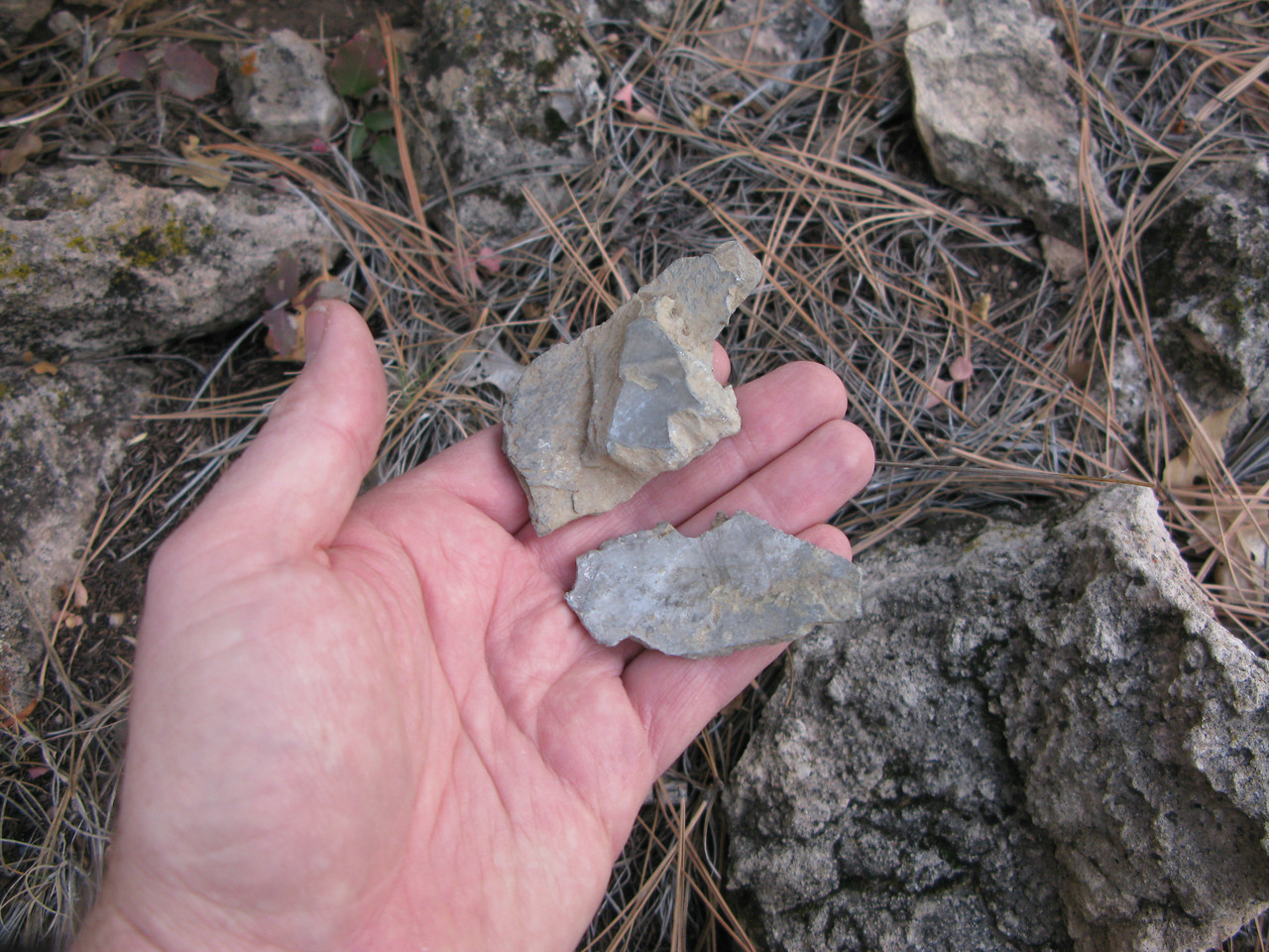 These two fragments look like the surrounding rocks, but they are actually pieces of the DC-3's left propeller blades that shattered when the left wing slammed into the cliff face. (Lostflights Photo)