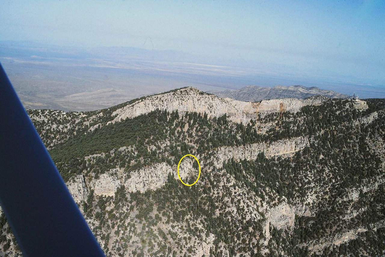 I used this photo to compare it with the 1942 aerial photo. The location of the crash site is circled. (Lostflights Photo)