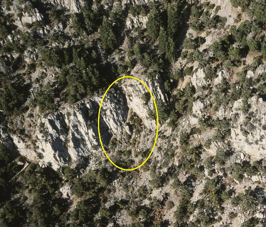 A close-up photo of the crash site, but still no wreckage was visible. (Lostflights Photo)