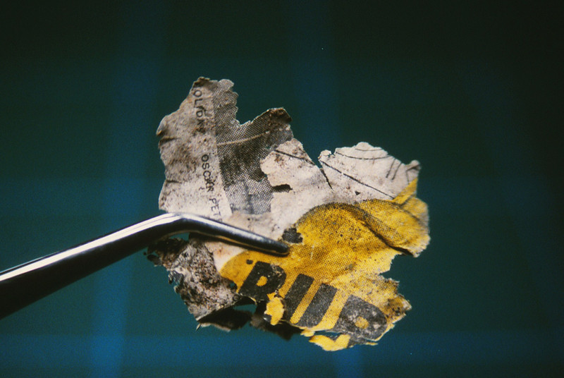 A portion of fragmented newspaper from the DC-7 main impact site.