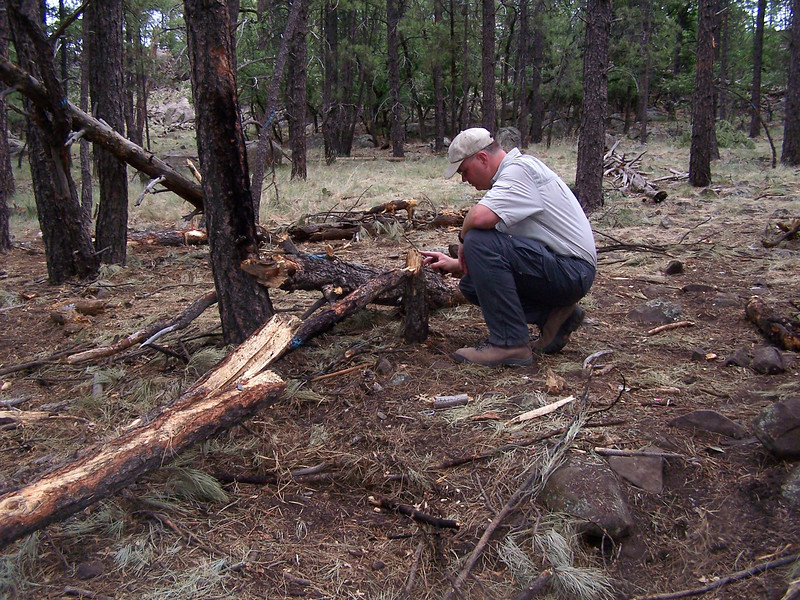 Inspecting tree damage at the impact site. (2008 LostFlights)