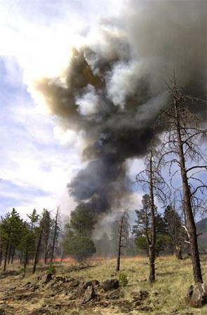 A column of dense smoke rises from the Guardian Air helicopter crash site. <br /> <br /> The crash and secondary explosion from the Guardian Air helicopter ignited a 10 acre brush fire which burned south and east across the mesa.<br /> (John Layshock/Arizona Daily Sun)