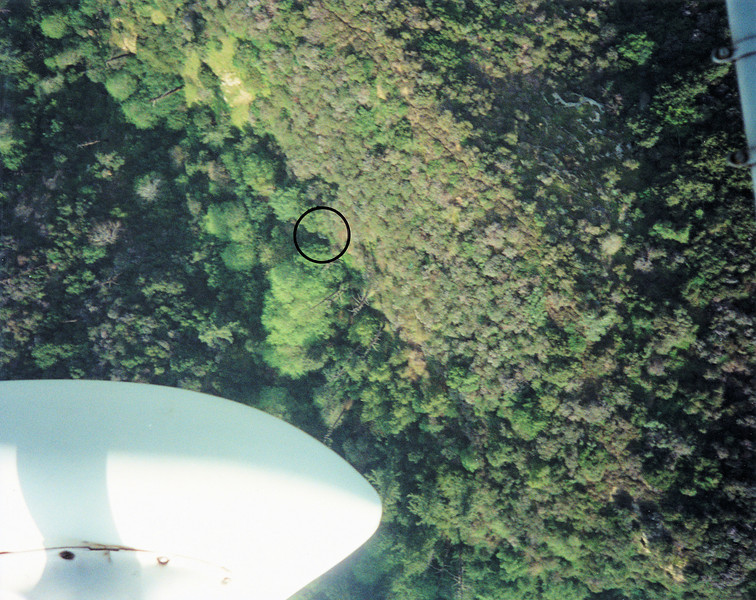 Nearly six years after my first discovery of the DC-9 tail section, I returned in a rented Cessna 172 very determined to find a hiking route to the site.  (LostFlights File Photo)