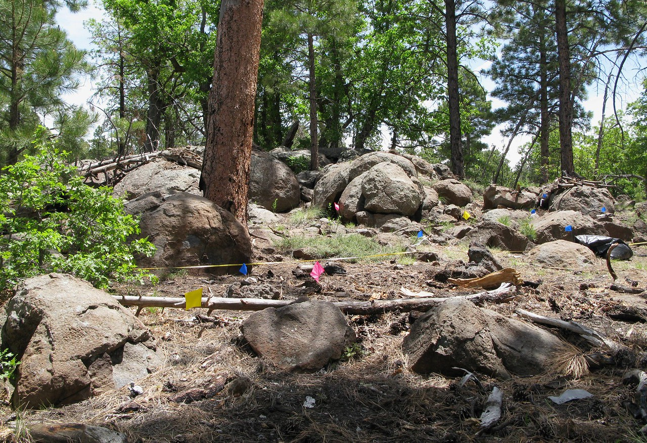 2009 - The color coded flags represent a number of artifacts located on the surface. A large amount of burned aircraft components and structure was located in this area.