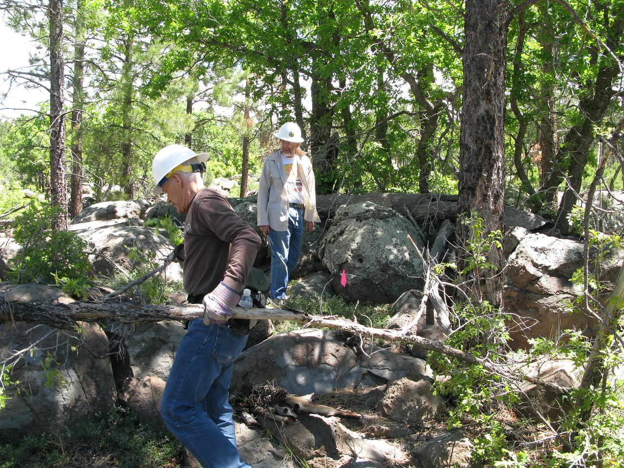 Steve Owen and Dick Cochran clear branches and vegetation to uncover wreckage hidden by years of forest growth. In some cases, a metal detector was used to locate aircraft fragments.