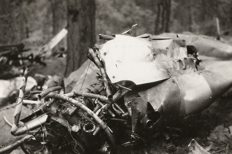A crushed engine pylon and cowl panel (minus the engine) was either from the #1 or #3 wing position and appears to be close to the main fuselage location. (J.R. Willis Photo)