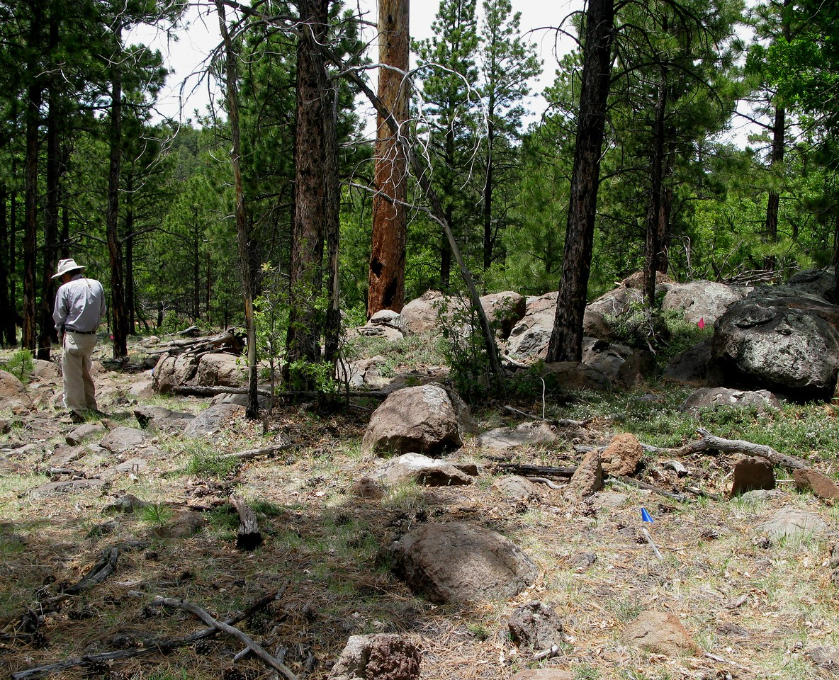 2009 - The same location, but with rocks and boulders that have been moved and displaced over the years.