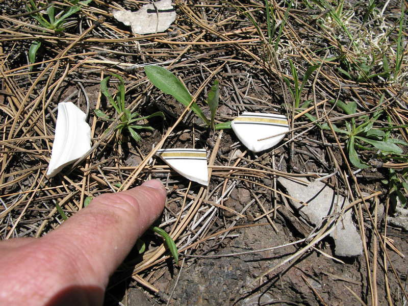 These fragments of Bauscher China dish and bowl serviceware were located at the main impact site.