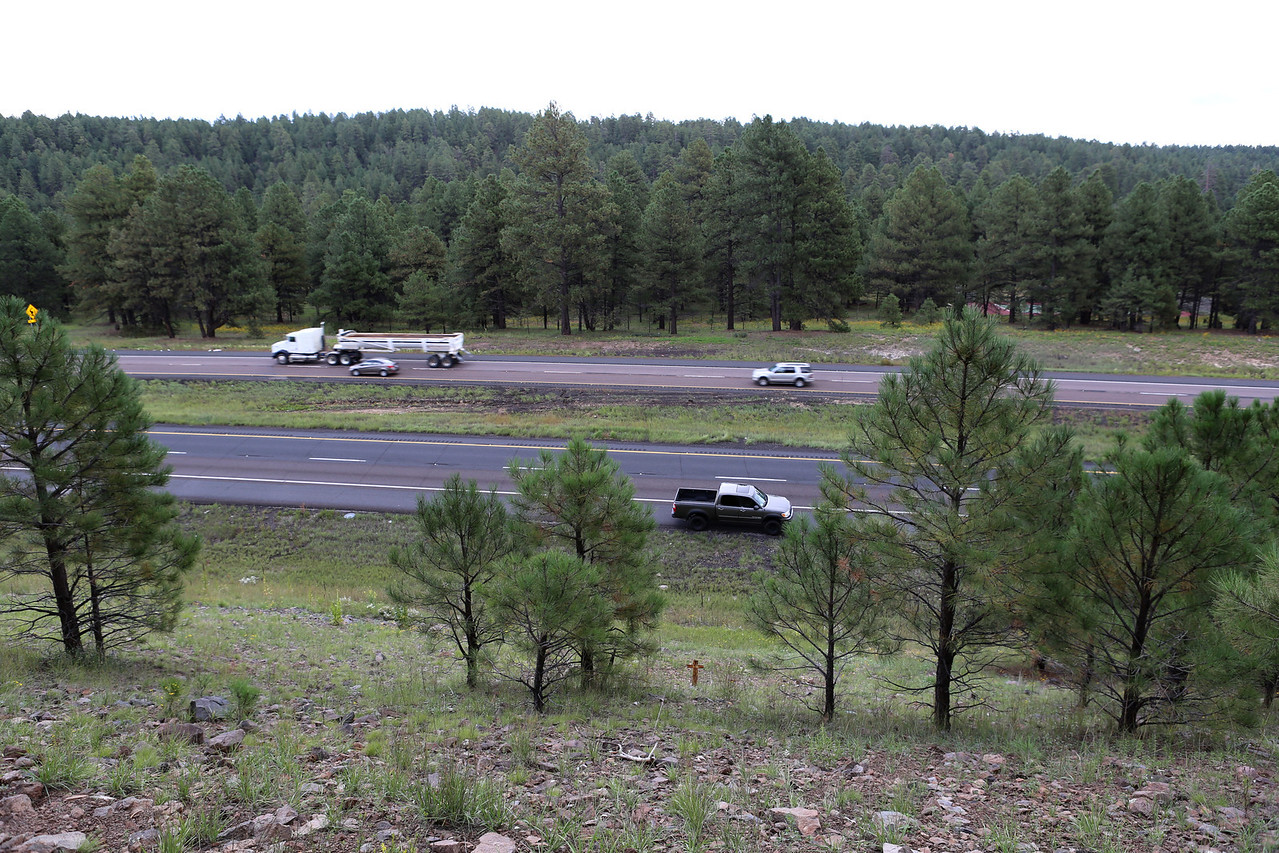 This photograph was taken from the top of the embankment looking east. Although not stated in the accident report, I discovered that the tops of the trees on the east side of the interstate had been hit by the aircraft during the descent.