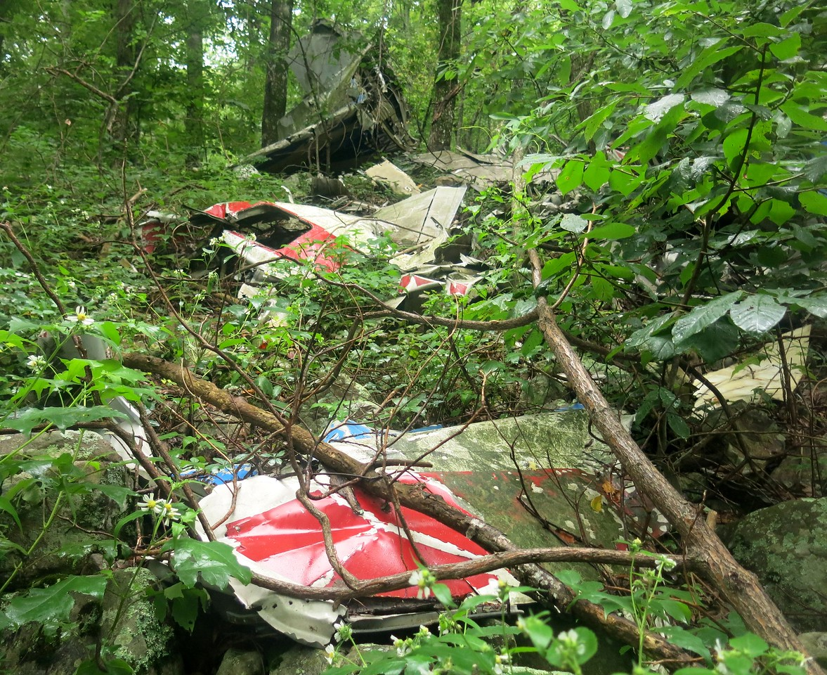 A short incline of vegetation and debris leads to the main wreckage of the Convair. As rain began to fall, the slope and the crash site became more difficult to traverse.
