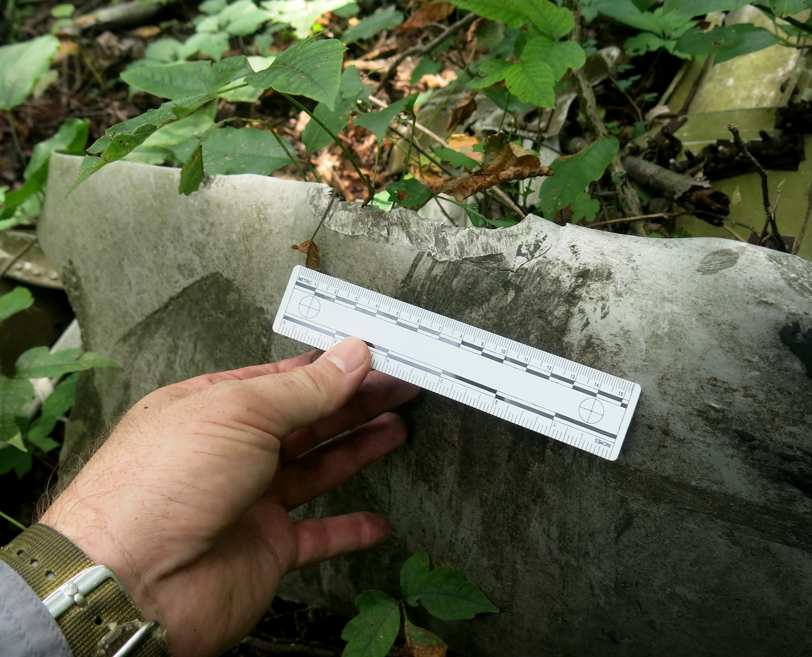 Evidence of leading edge gouging and torsional bending of the blades provide testimony that this propeller was developing power when it struck the trees.