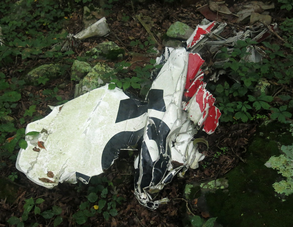 """During our visit to the crash site, we located a few fragments of fuselage that had the airline's name painted on the side.<br /> <br /> This fragment had a couple letters from the name """"Texas""""."""