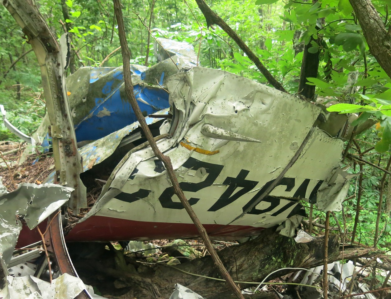 "This portion of the right-aft fuselage contained the aft baggage door and aircraft registration number ""N94230""."