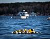 Lobster Buoys.  Owls Head, Maine.