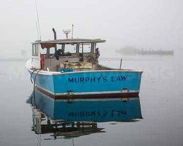 MIP_0694