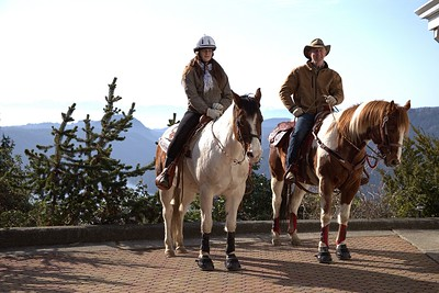 Prancing Horse Retreat - Vancouver Island, BC, Canada