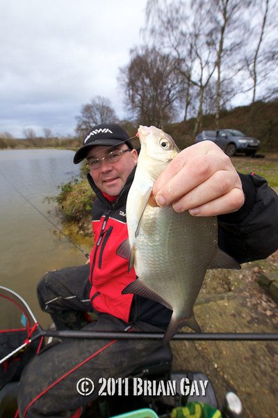 holding a good skimmer bream, Will Raison fishes a small cage feeder with dead maggots and fishmeal for bream. © 2012 Brian Gay