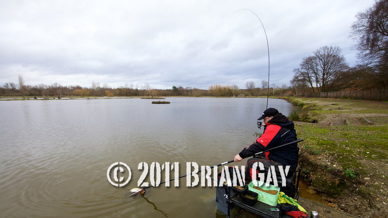 scenic action shot playing a skimmer bream on rod and line, Will Raison fishes a small cage feeder with dead maggots and fishmeal for bream. © 2012 Brian Gay