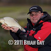 Holding a good fish. Will Raison fishes a small cage feeder with dead maggots and fishmeal for bream. © 2012 Brian Gay