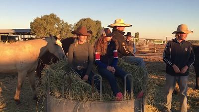 Horse Course 2018 028