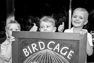 comedy festival @ the bird cage