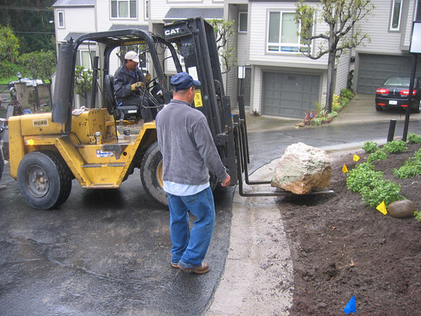 After new trees and plants are in, ornamental boulders are installed along the front perimeter.
