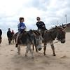 Mablethorpe donkeys