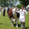 Lincolnshire Show