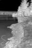 Infrared Shoreline
