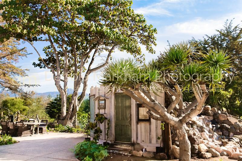Debbie Markham Cambria Photographer - California Beach + Countryside Destination Vacation