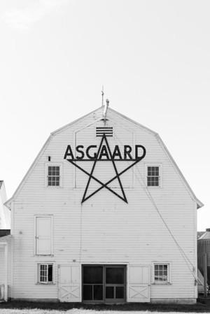 Asgaard_Farm_Photographs-2921
