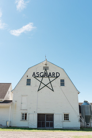 Asgaard_Farm_Photographs-2929