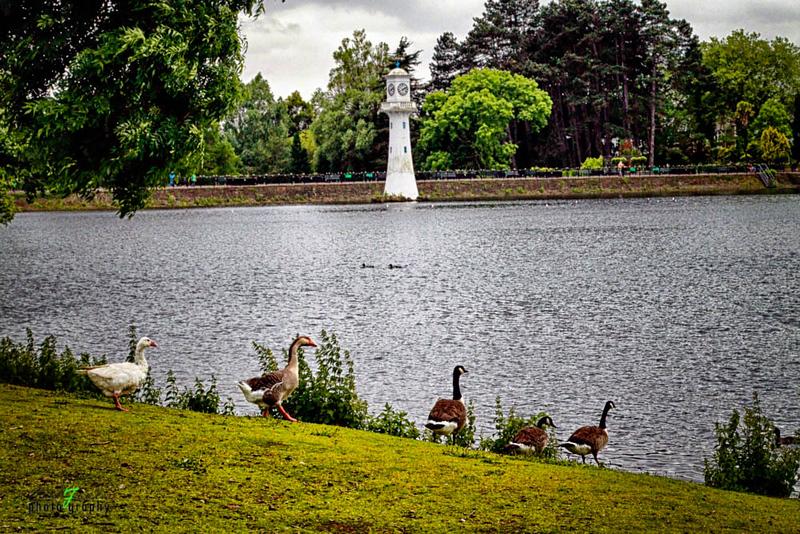 Cardiff Roath Park- 3