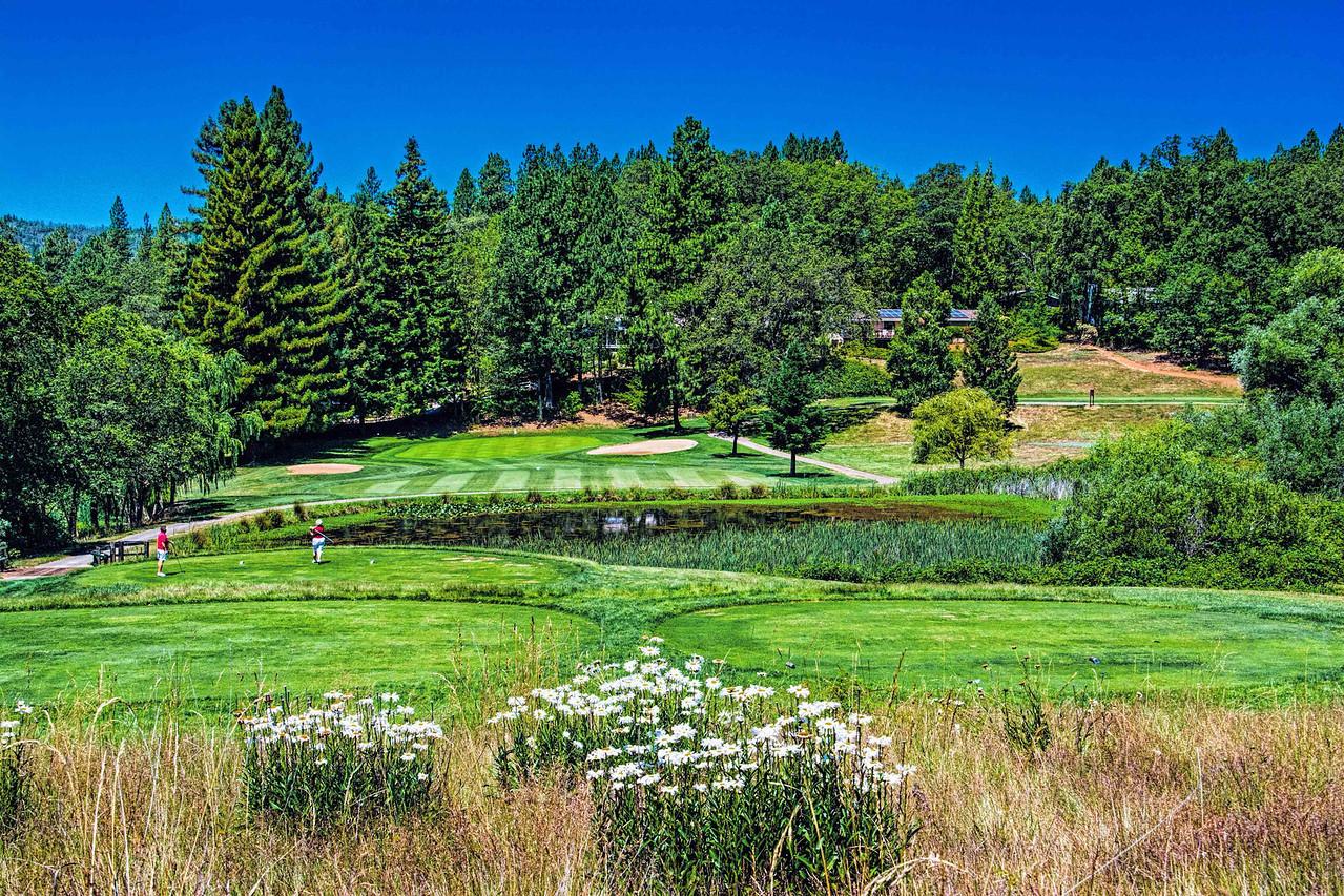 Alta Sierra Country Club's 14th Hole