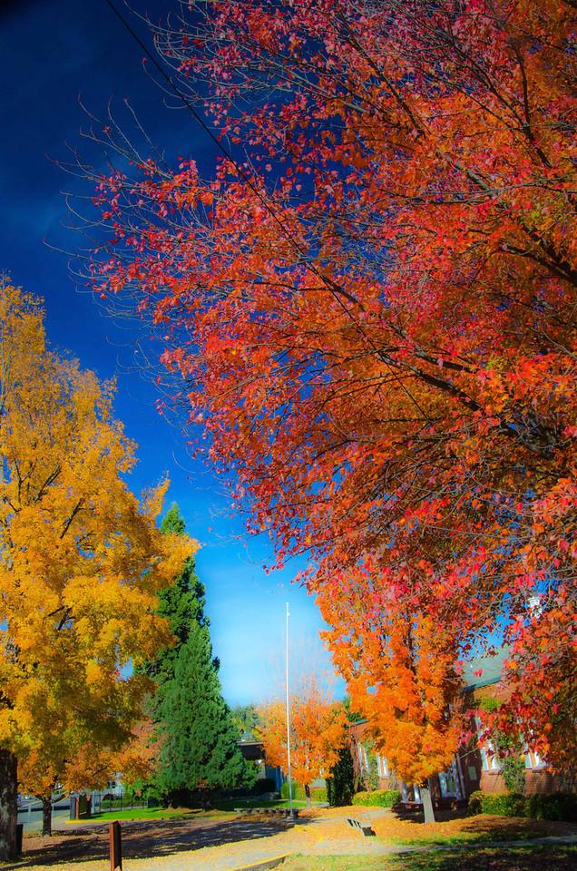 Grass Valley Autumn Rainbow