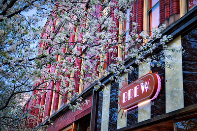 Spring at Brew in Traverse City