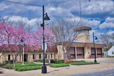 Spring Redbuds at the Central Fire Station in Highland, Indiana