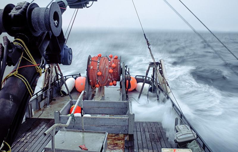 Braving the high seas