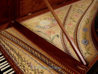 Harpsichord soundboard with decorations.