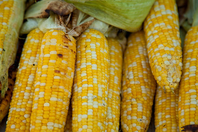 Schererville, Indiana Corn Roast at Redar Park